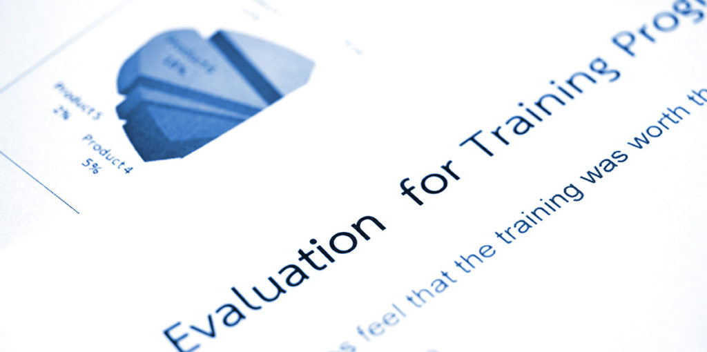 consulting program evaluation services